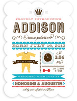 Baby Infographic Birth Announcements