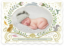 Woodland Awakening Owl Birth Announcements