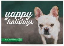 Yappy Holidays by Oak Street Press